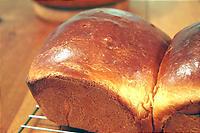 今日は基本の食パン。