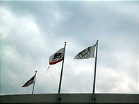 はためくオリンピックの旗!