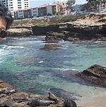 怪しいおっさんと海岸。
