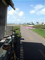 延々と続くきれいな自転車コース