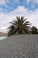 快適な屋根の上
