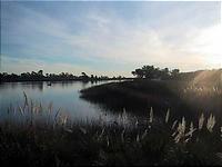 季節感のない湖